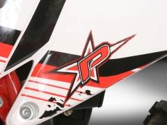 Puzey BRM 300 - 11