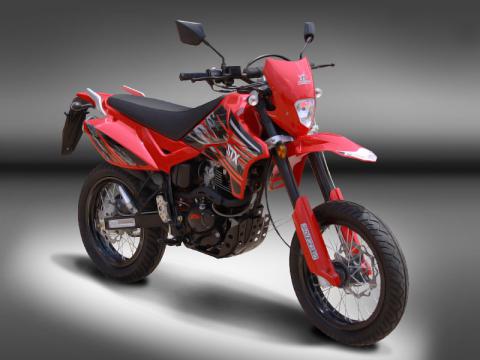 Puzey STX 200 MTD - 01