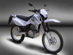 Puzey STX 200 Trail - 01