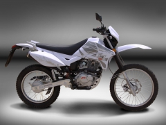 Puzey STX 200 Trail - 02